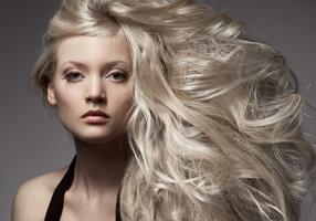 Palm Beach Gardens Florida Hair Coloring Services
